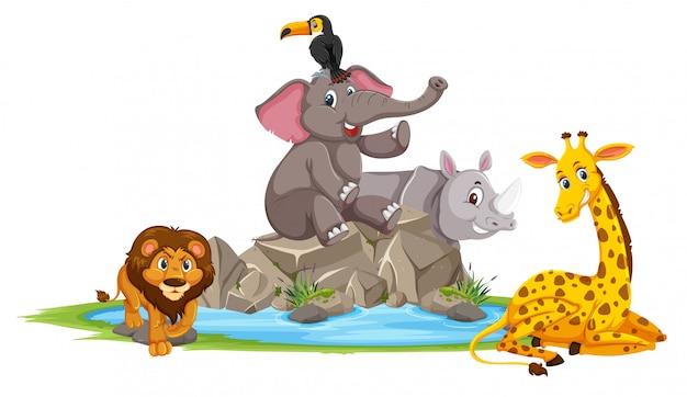Animali selvaggi in natura Vettore Premium