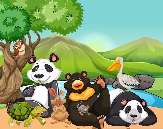 Animali selvaggi nel campo Vettore gratuito