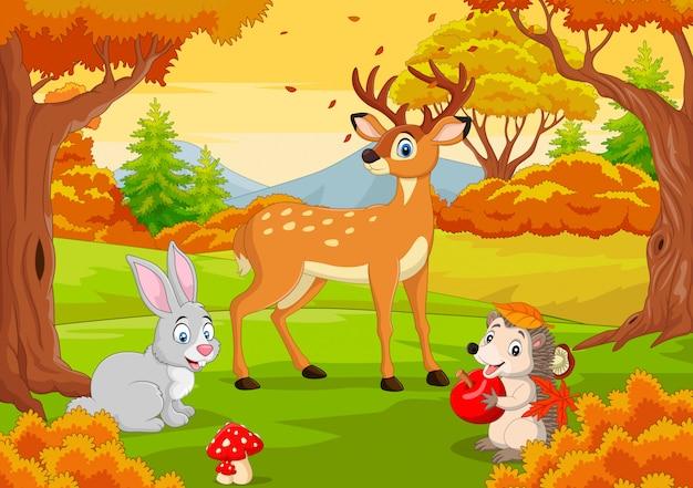Animali selvatici del fumetto nella foresta di autunno Vettore Premium