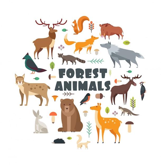 Animali selvatici della foresta e uccelli disposti in cerchio. Vettore Premium