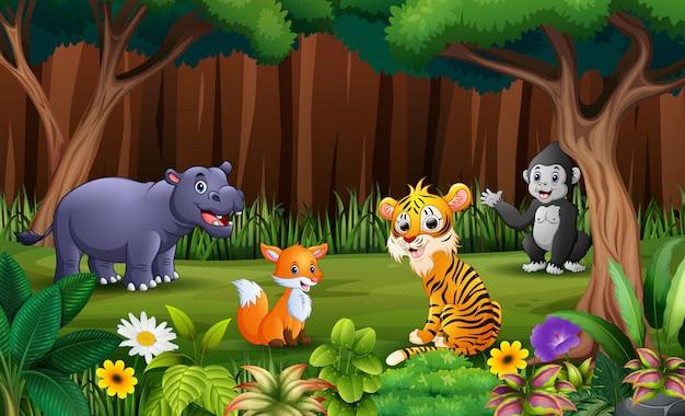 Animlas selvatici che giocano nel parco Vettore Premium