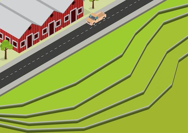 Antenna di terrazze di riso verde isometrica Vettore Premium