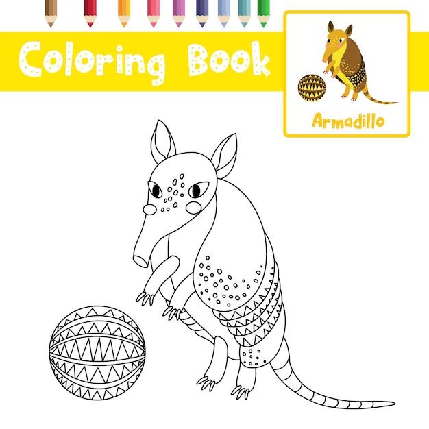 Armadillo con palla da colorare Vettore Premium