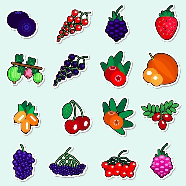 Autoadesivi delle bacche di autunno messi su fondo blu raccolta variopinta delle icone della frutta Vettore Premium