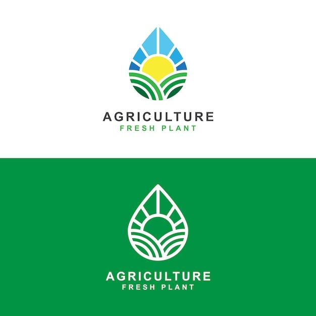 Azienda agricola di agricoltura con il modello di concetto di logo di goccia dell'acqua dolce e del sole Vettore Premium
