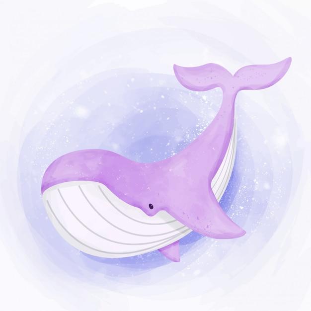 Balena carina nuota nell'oceano Vettore Premium