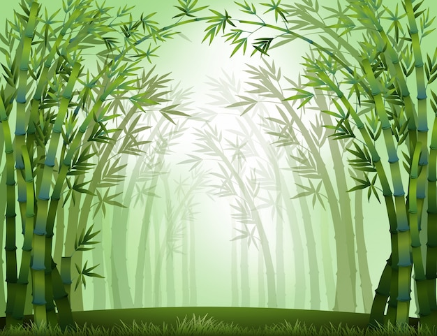 Bambù Vettore gratuito