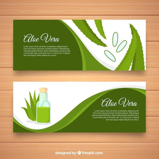 Bandiere verde aloe vera Vettore gratuito