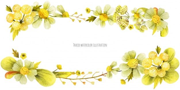 Banner di testa piante selvatiche gialle Vettore Premium