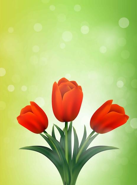 Banner di tulipani. fiori d'estate Vettore Premium