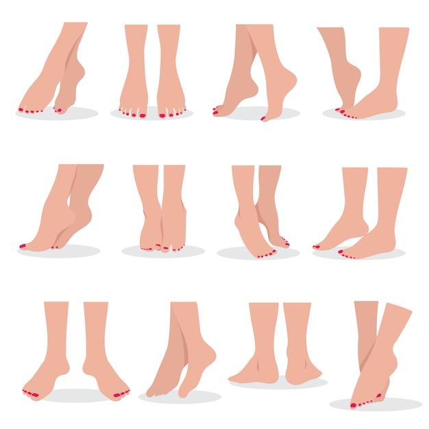 Bei piedi e gambe nudi della donna isolati, insieme attraente di bellezza delle parti del corpo femminili Vettore Premium