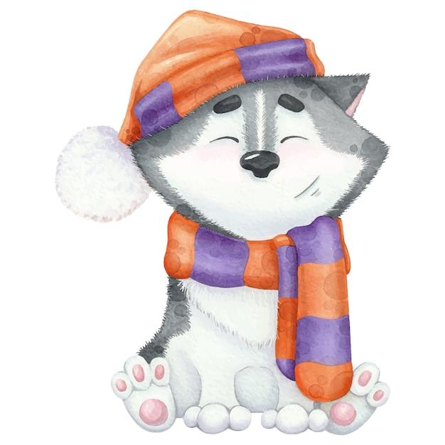 Bel husky ad acquerello in sciarpa e cappello. Vettore Premium