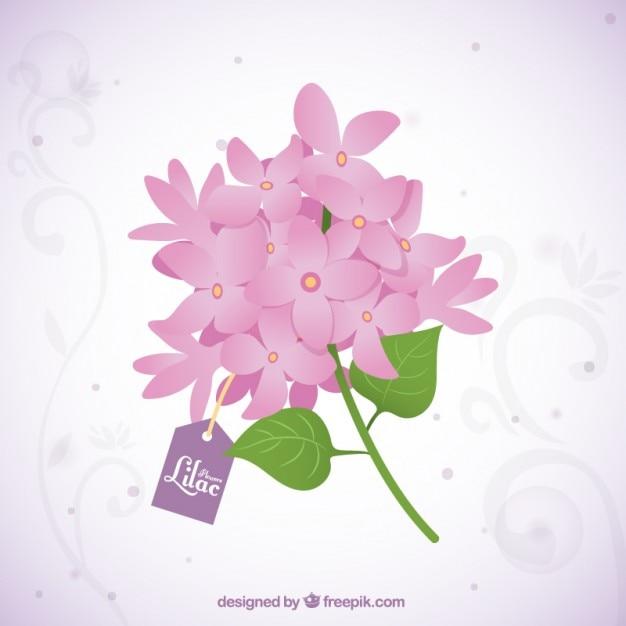 Bel mazzo di fiori lilla con un tag Vettore gratuito