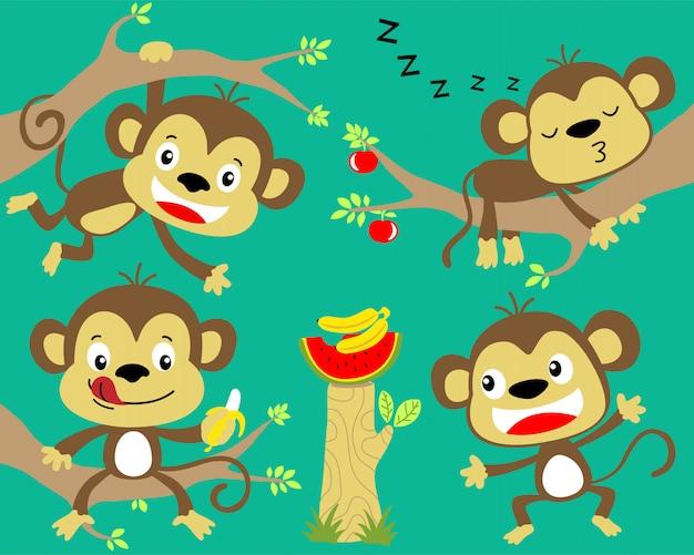 Bel set di cartoon scimmia Vettore Premium
