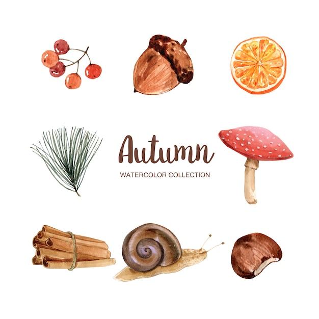 Bella illustrazione di autunno con l'acquerello per uso decorativo. Vettore gratuito