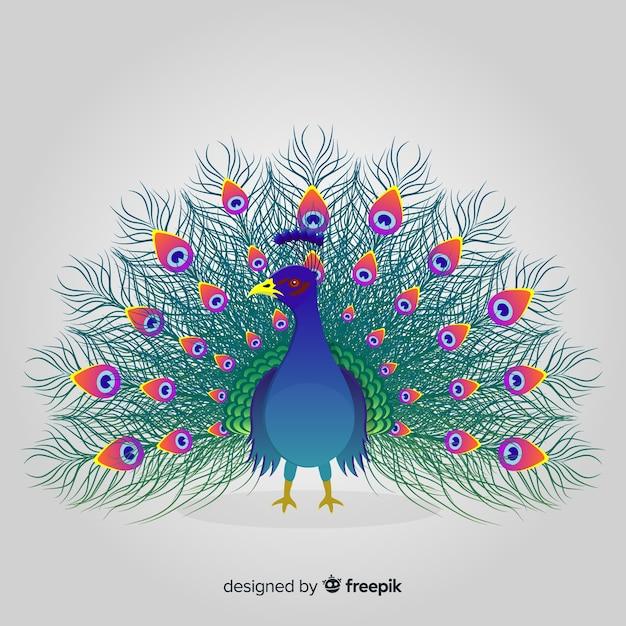 Bellissimo design di pavone Vettore gratuito