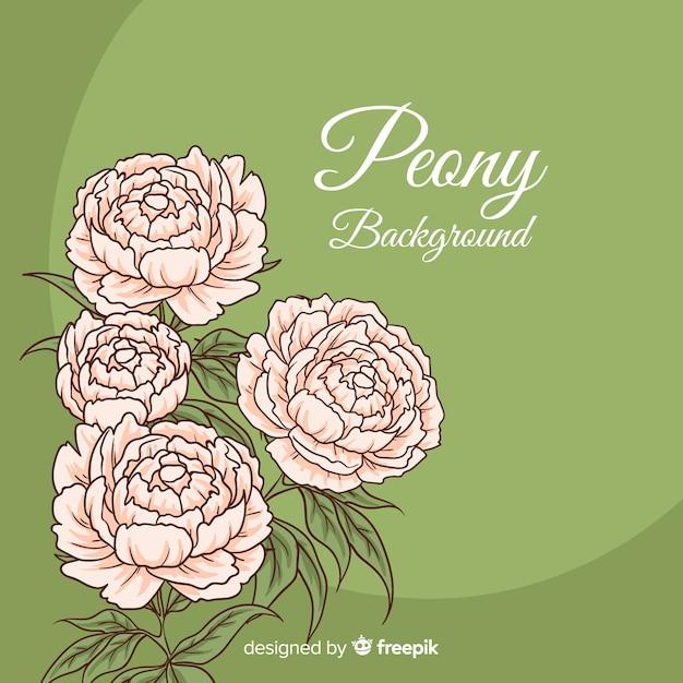 Bellissimo ed elegante sfondo di fiori di peonia Vettore gratuito