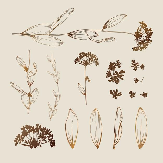 Bellissimo sfondo floreale elementi per il design Vettore gratuito