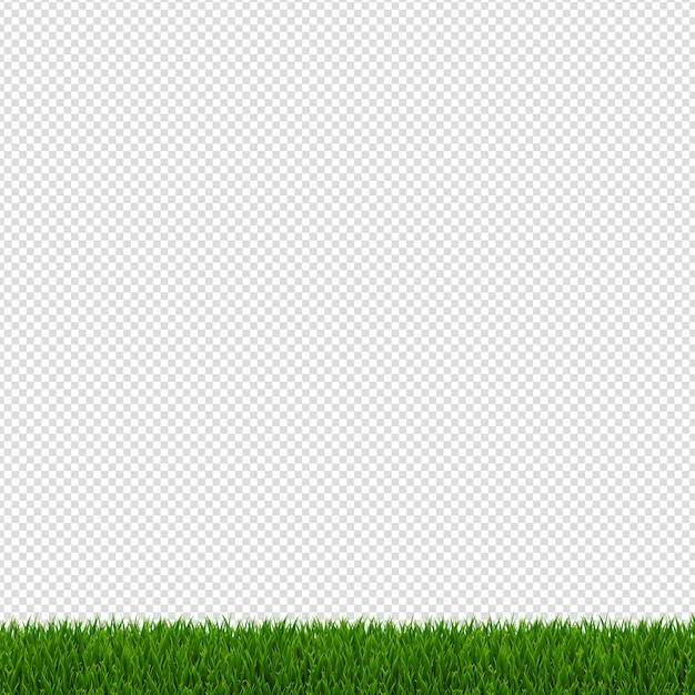 Bordo dell'erba verde della sorgente Vettore Premium