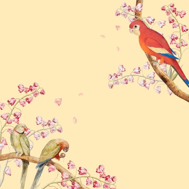 Bordo di mockup di pappagalli Vettore gratuito