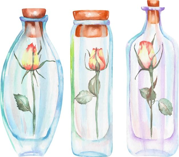 Bottiglie dell'acquerello dell'illustrazione con le rose dentro Vettore Premium