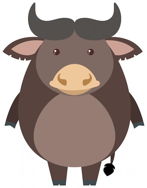 Bufalo grigio su sfondo bianco Vettore gratuito