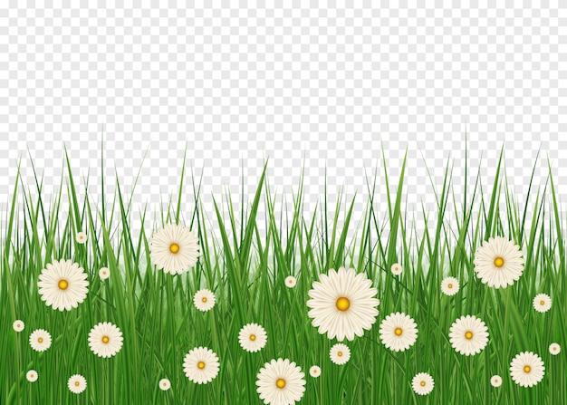 Buona pasqua con realistica erba di pasqua. elemento della decorazione di pasqua con i fiori dell'erba e del prato della sorgente Vettore Premium