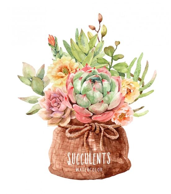 Cactus e piante grasse dell'acquerello nel sacco del sacchetto di pot Vettore Premium