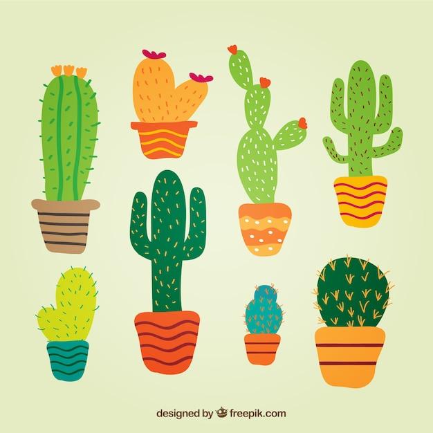Cactus in stile carino Vettore gratuito