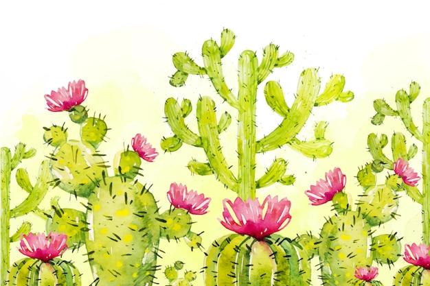 Cactus sfondo acquerello Vettore gratuito