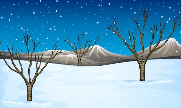 Campo coperto di neve Vettore Premium