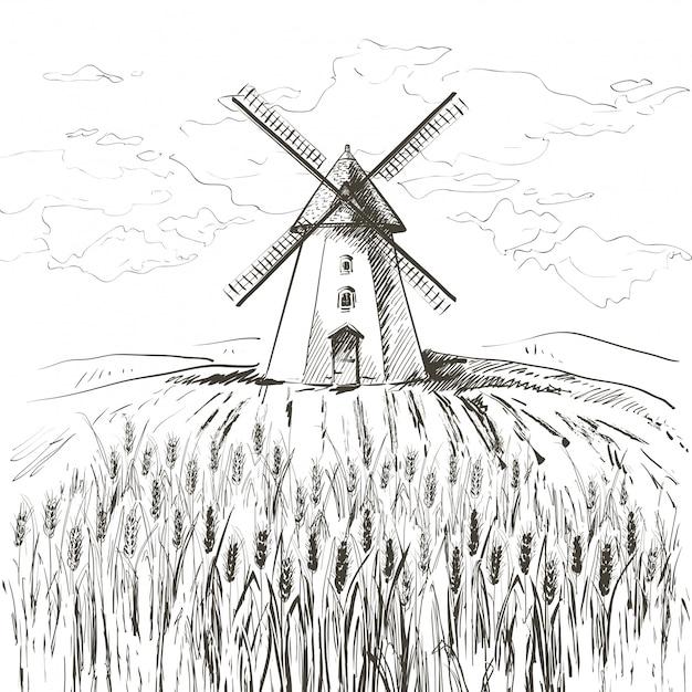 Campo di grano e mulino a vento Vettore Premium