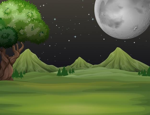 Campo verde a priorità bassa di notte Vettore gratuito