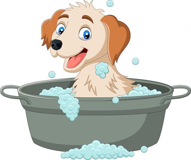 Cane cartone animato con un bagno Vettore Premium