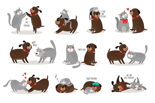 Cane e gatto insieme Vettore Premium