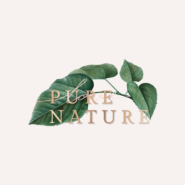 Carta da parati natura pura Vettore gratuito
