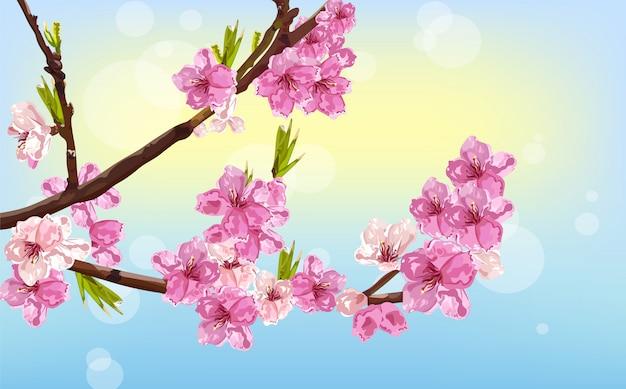Carta di primavera fiori di ciliegio Vettore Premium