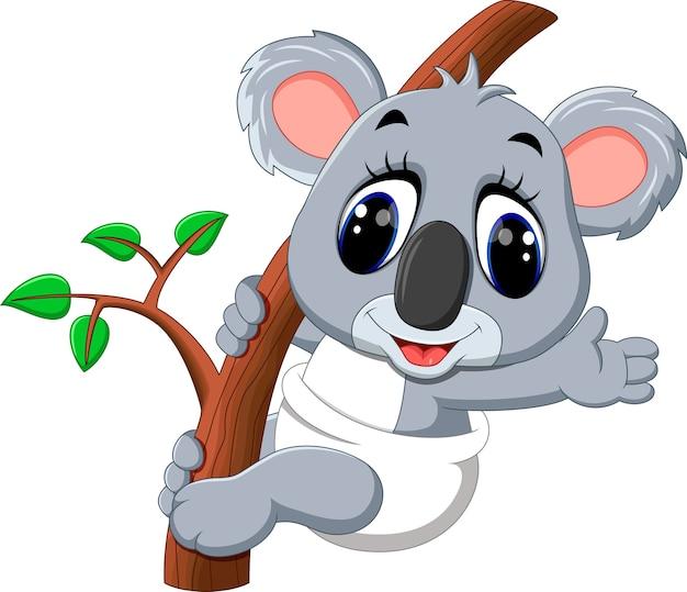 Cartone animato carino koala scaricare vettori premium