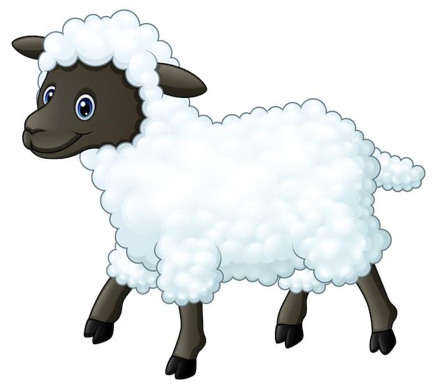 Cartone animato carino pecore scaricare vettori premium