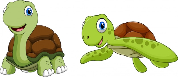 Cartone animato carino tartaruga Vettore Premium