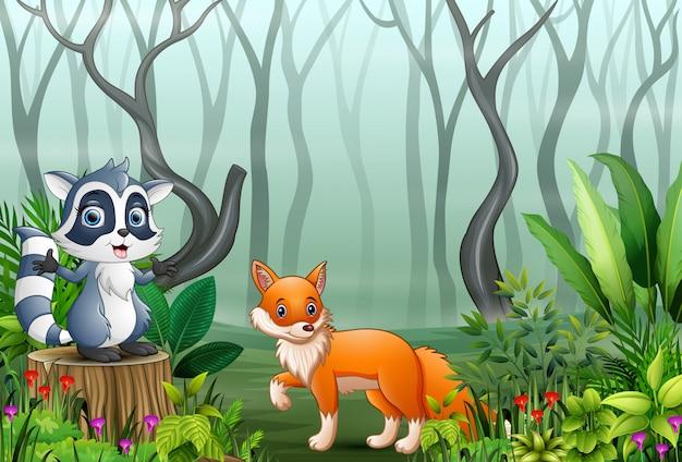 Cartone animato di procione e volpe nella foresta nebbiosa Vettore Premium
