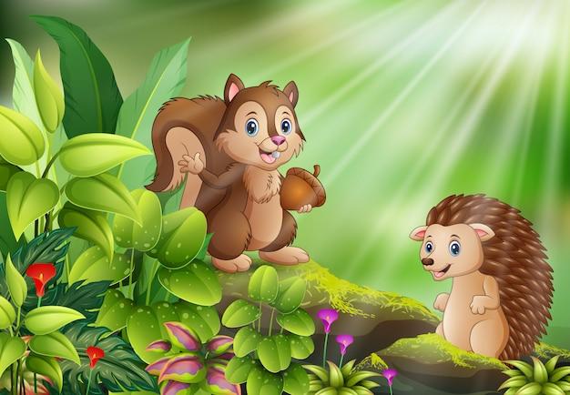 Cartone animato di scena della natura con scoiattolo e riccio