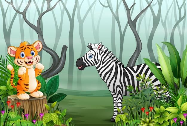 Cartone animato di tigre e zebra nella foresta nebbiosa Vettore Premium