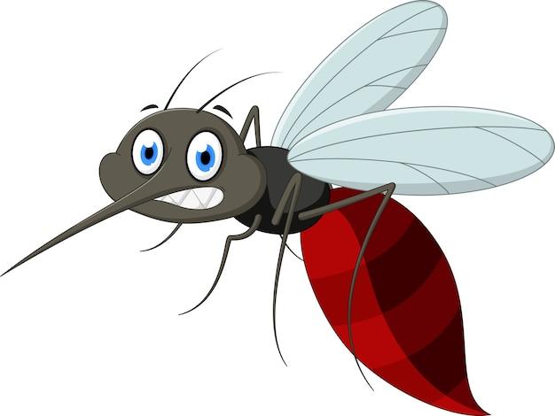 Cartone animato di zanzara arrabbiato scaricare vettori premium