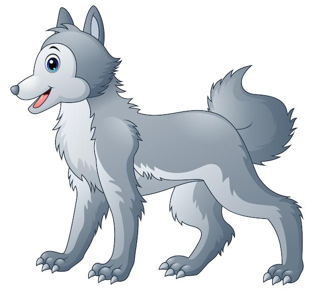 Cartone animato lupo carino scaricare vettori premium