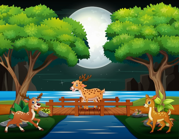 Cartoni animati di cervi che giocano nella scena notturna Vettore Premium