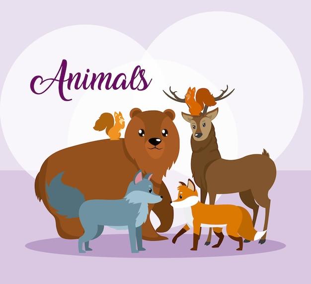 Cartoni animati di simpatici animali su sfondo colorato Vettore Premium
