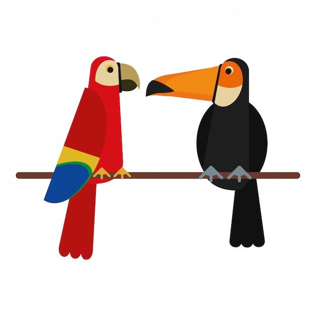 Cartoni animati di uccelli esotici scaricare vettori premium