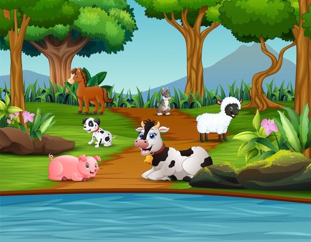 Cartoon animal farm godendo nel parco Vettore Premium