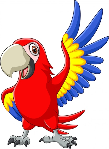 Cartoon macaw agitando Vettore Premium